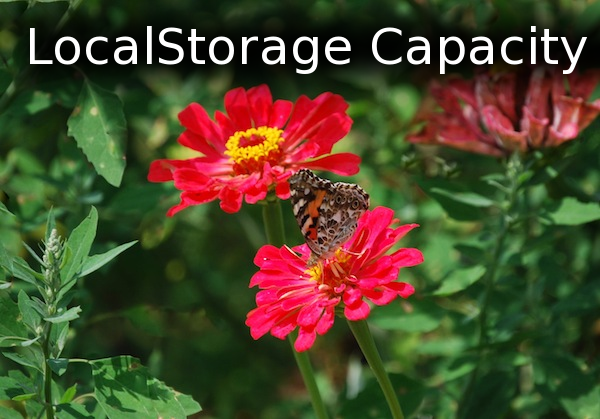 LocalStorage Capacity